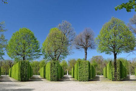 bosquet Facher, Schonbrunn.jpg