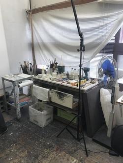 paretin lab.1.JPG